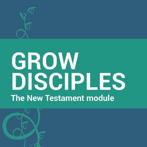 GD New Testament