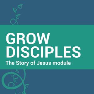 GD Story of Jesus