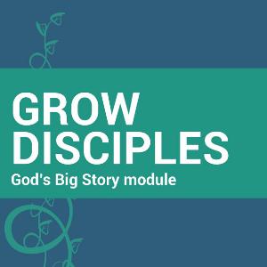 GD God's Big Story